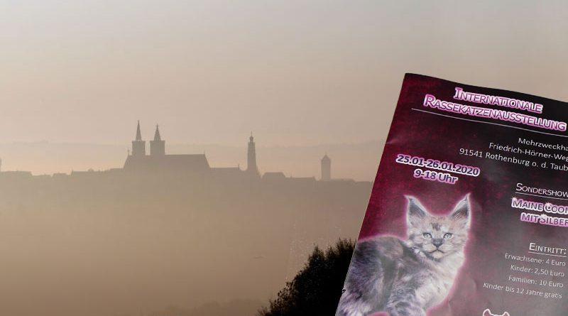Rothenburg ob der Tauber, Katzenausstellung, Taubertalperser