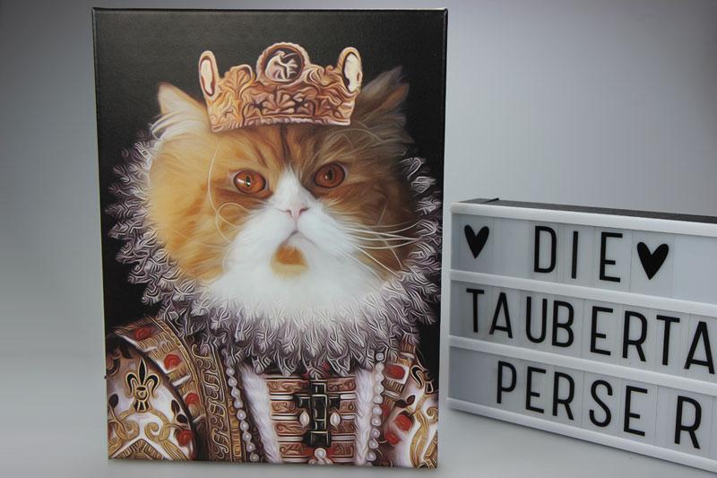 King Dividi, Paintopets, Taubertalperser, Bild,