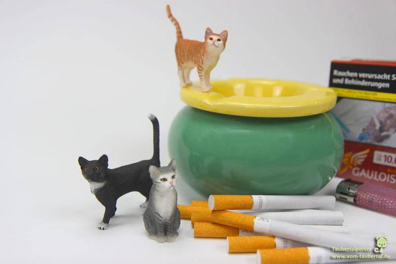 Passivrauchen Katzen, Katzenblog