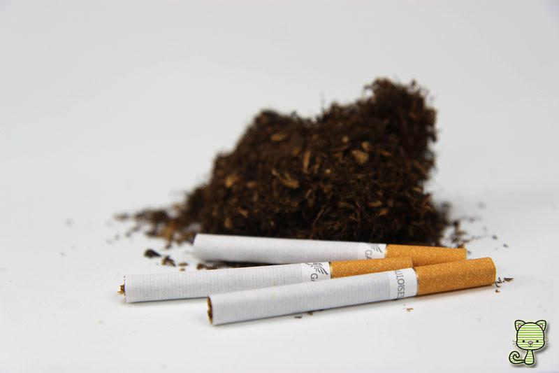 Tabak, Zigaretten, Nikotin