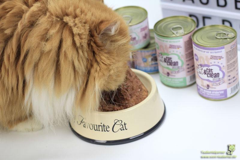 Cat&Clean Katzenfuttertest
