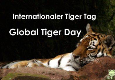 Global Tiger Day, Internationaler Tag des Tigers