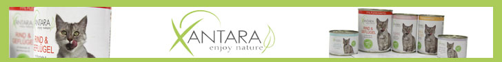 Xantara Online Shop