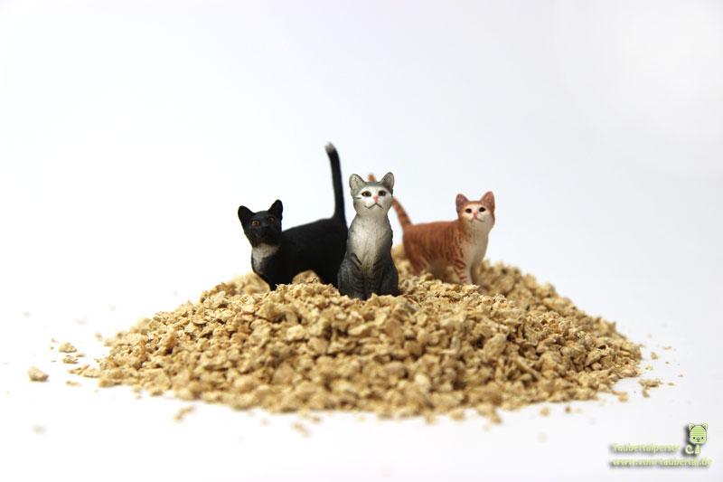 Katzenstreu Katzen